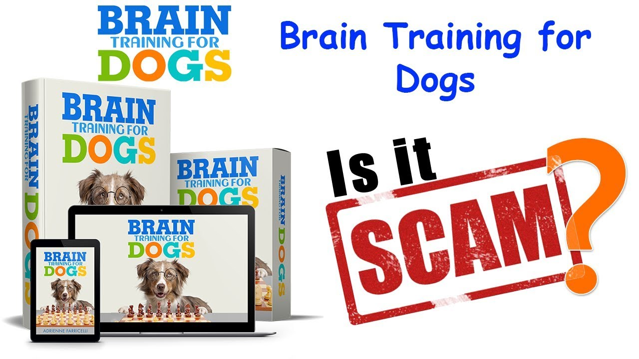 Brain Training for Dogs Review PDF Book Download - Brain Training for Dogs Review & PDF (Book) Download